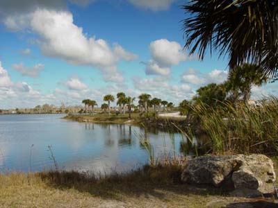 A Guide To Everglades Florida And Other Florida City Guides